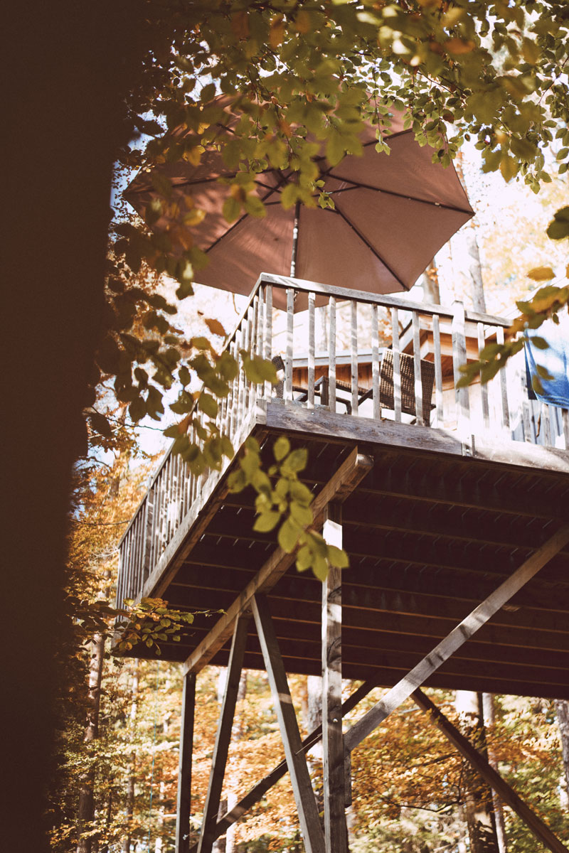 In Direkter Umgebung Der Baumhäuser Ist Ansonsten Nur Ein Campingplatz,  Drei Bade Weiher Und Ganz Viel Natur.